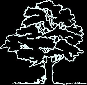 strom_razitko